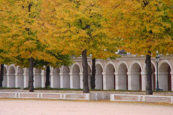 Autumn colours on the central square | Aranjuez | Spain