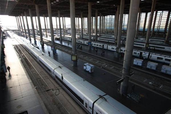 Trains waiting for departure at Atocha station | Atocha Station | Spain