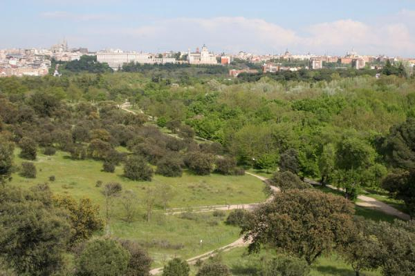 Picture of Madrid seen from Casa de Campo - Spain - Europe