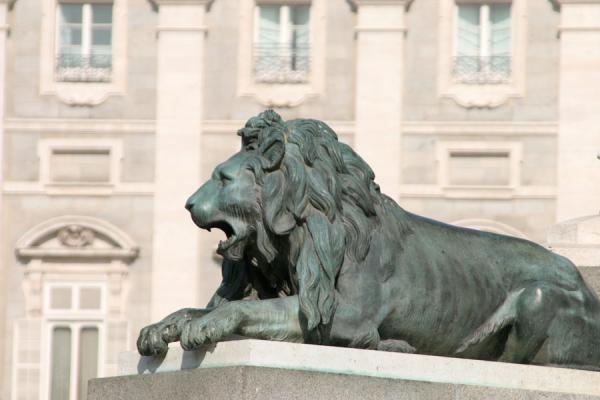 Picture of Royal Palace (Spain): Lion guarding the Royal Palace