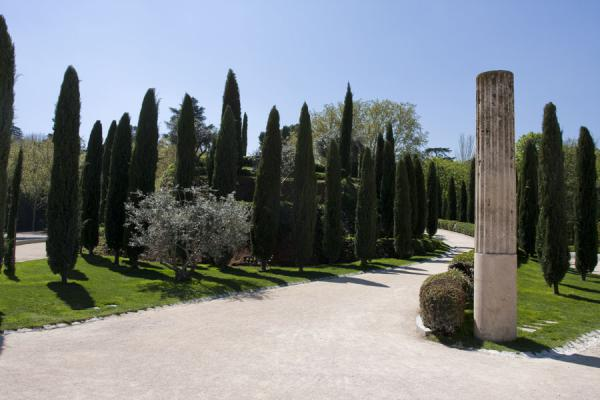 Picture of Trees and pillar at the Bosque del Recuerdo, to commemorate the victims of the March 11, 2004 attacksMadrid - Spain
