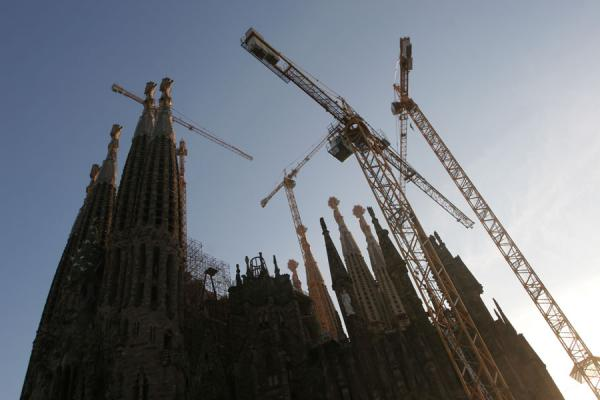 Towers of the Sagrada Familia with cranes | Sagrada Familia | Spanje