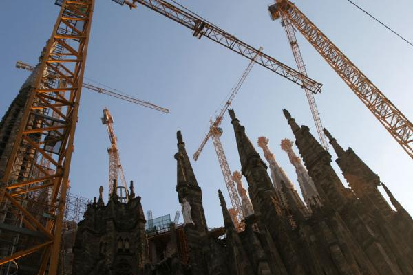 Cranes and towers of the Sagrada Familia | Sagrada Familia | Spanje