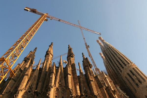 Looking up the towers and cranes of the Sagrada Familia | Sagrada Familia | Spanje