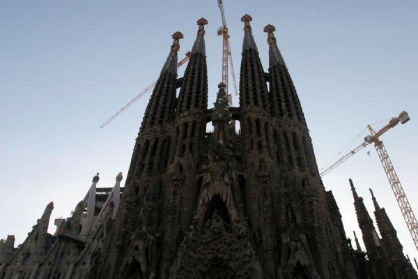 Contours of the Sagrada Familia | Sagrada Familia | Spain
