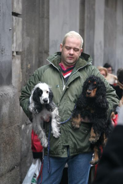 Foto di Man with his dogs just before they will be blessed by the priestMadrid - Spagna