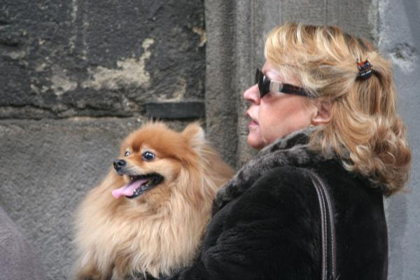 Foto di Woman with her dogMadrid - Spagna