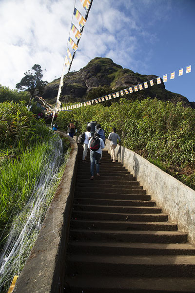 Picture of Some of the more than 5,000 steps on the way up the mountain - Sri Lanka - Asia