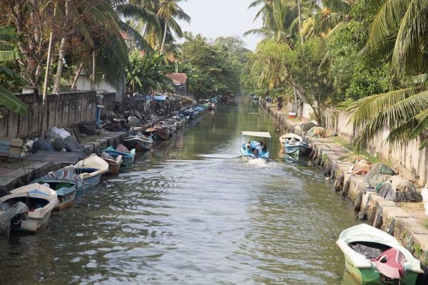 View from a bridge: a boat cruising through the Hamilton Canal | Hamilton Canal | Sri Lanka