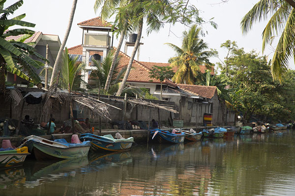 Foto de Row of boats moored in the canalNegombo - Sri Lanka