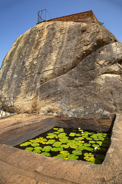 Photo de Square pond with lilies at the foot of a boulder on top of Sigiriya rockSigiriya - Sri Lanka