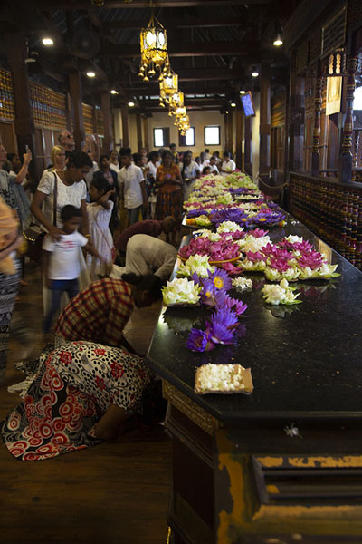 Foto di People laying flowers in the sacred interior of the Temple of the Sacred Tooth - Sri Lanka - Asia