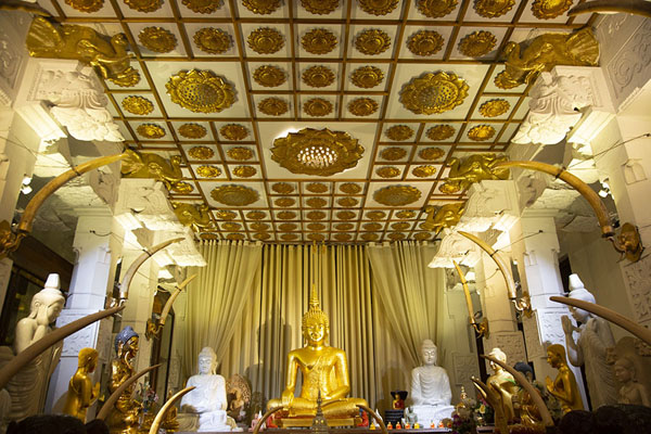 Picture of Hall with golden Buddha and tusks in the temple complex
