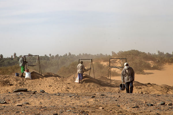 Foto di Workers filtering sand to search for items that can help us learn more about the Amara West settlementAbri - Sudan