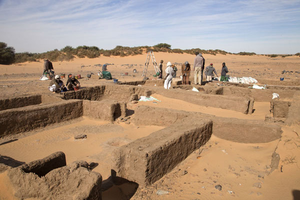 Picture of Part of the team at work at the ruins of Amara WestAbri - Sudan