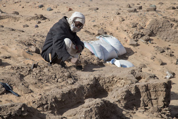 Picture of Amara West (Sudan): One of the people at work at the excavations of Amara West