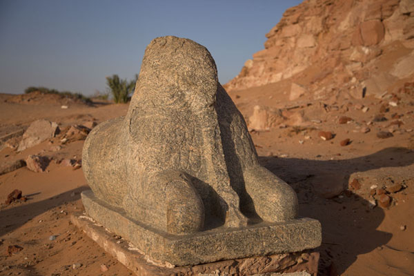 Picture of One of the sculpted rams at the temple of AmunKarima - Sudan