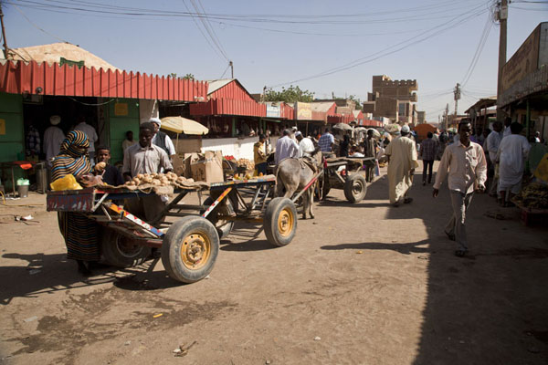 Picture of Market of Kassala with donkey cartKassala - Sudan