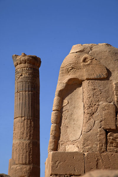 Picture of Elephant and column in Temple 100Musawarat - Sudan