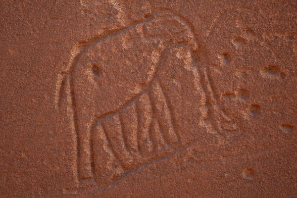 Picture of Elephant engraved on a wall of the Great Enclosure of Musawarat