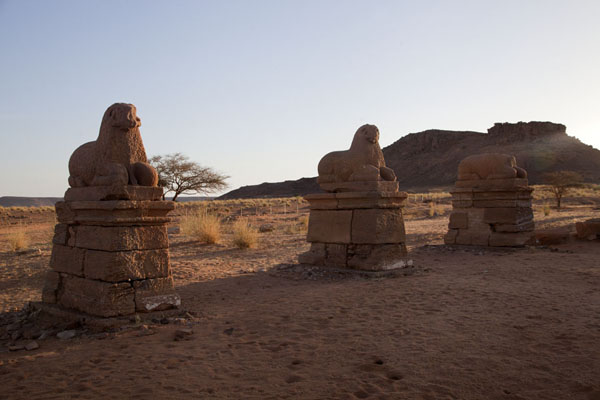 Picture of Temple of Amun with row of rams and hill in the backgroundNaqa - Sudan