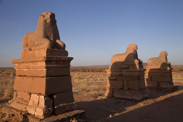 Row of rams at the Temple of Amun | Naqa | Sudan