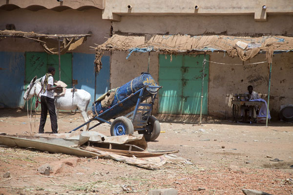 Foto van Donkey with cart at the camel market of OmdurmanOmdurman - Soedan