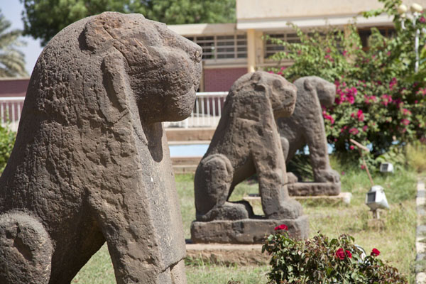 Row of lion statues outside the main museum building | Sudan National Museum | Soedan
