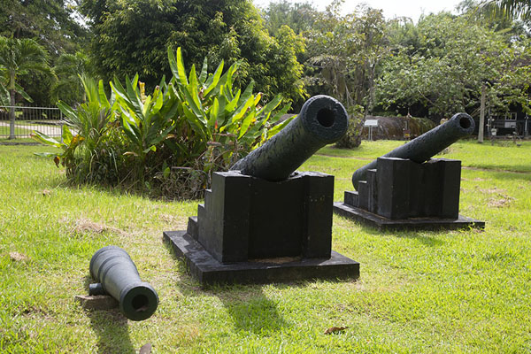 Several cannons on a lawn in Fort Nieuw Amsterdam | Fort Nieuw Amsterdam | Surinam