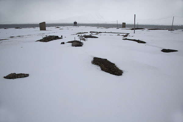 Foto de Remains of whaling activity found at Finneset, south of BarentsburgBarentsburg -