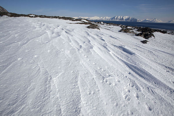 Snowy slopes near Camp Millar | Camp Millar | Svalbard and Jan Mayen