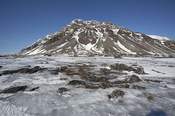 Icy surface with mountain near Camp Millar | Camp Millar | Svalbard and Jan Mayen