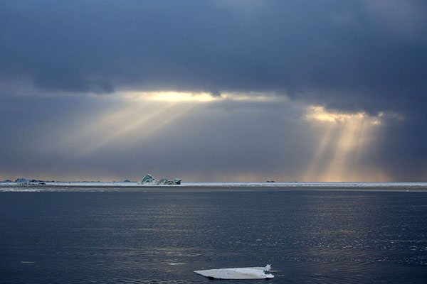 Foto van Rays of sunlight shining on icebergs near MohnbuktaMohnbukta -