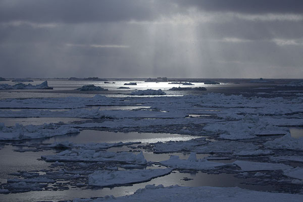 Rays of sunlight shining on the ice and water near Mohnbukta | Mohnbukta |