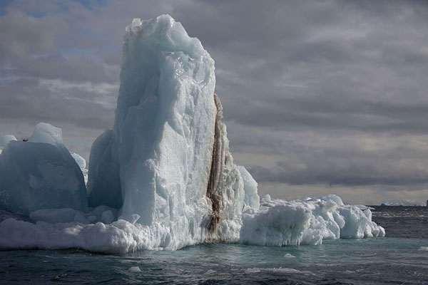 Foto van One of the many icebergs floating off NegribreenNegribreen -
