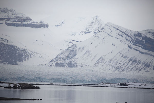 Foto van One of the many glaciers reaching KongsfjordenNy-Ålesund -