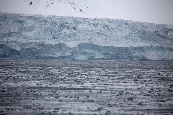 Photo de Ice drifting near Eidembreen glacierNy-Ã…lesund -