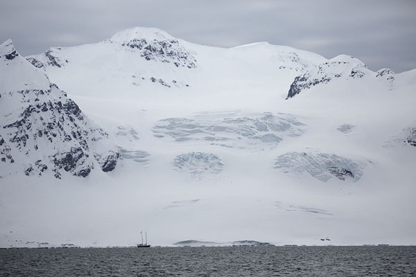 Foto van Glacier on the east coast of Prins Karls Forland covered in thick snowNy-Ålesund -