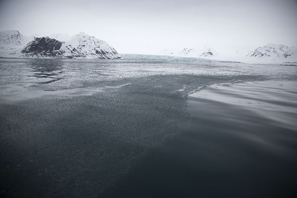 Foto van Ice floating on the sea near EidemsbreenNy-Ålesund -