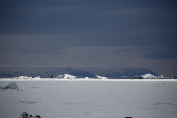 View of icebergs frozen into Storfjorden near Mohnbukta | Snowmobile to Spitsbergen East Coast | 司法勒巴和燕麦言