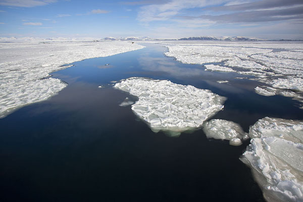 Plates of ice with open water in between in Storfjorden | Formas de hielo de Storfjorden |