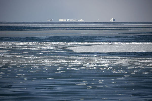 Foto de Ice with icebergs in the background at the southern side of StorfjordenStorfjorden -