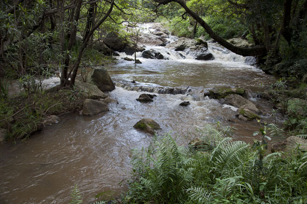 Picture of Phophonyane river just above the fallsPhophonyane - Swaziland
