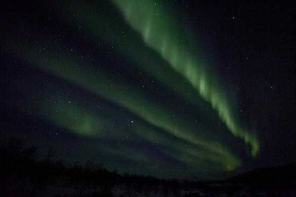 Long streaks of northern light in the dark sky | Abisko Northern Lights | Sweden