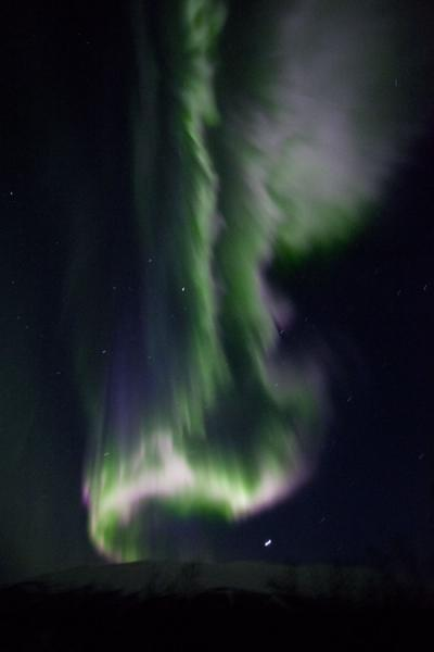 Bright white, green, and purple light making for an exciting northern lights show | Abisko Northern Lights | Sweden