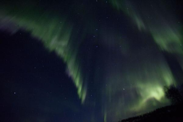 Green aurora borealis lighting the sky | Abisko Northern Lights | Sweden