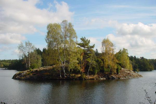 One of the small islands in the lake at Delsjön | Delsjön | Sweden