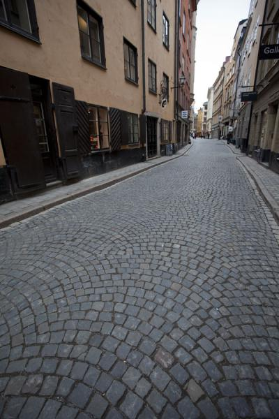 Picture of Gamla Stan (Sweden): Typical street in Gamla Stan with tall houses and cobble-stoned pavement