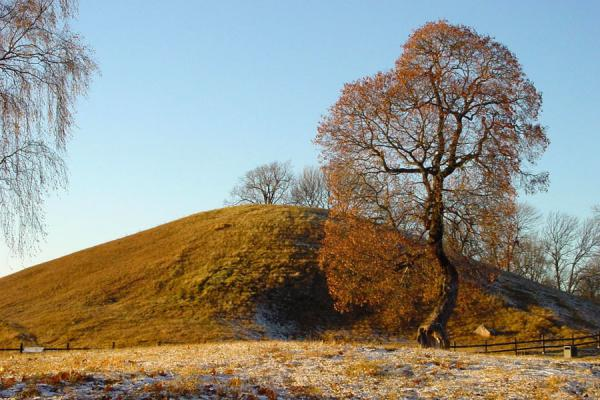 The East Mound, on the right of the tree, a stone marks the entrance | Gamla Uppsala | Sweden