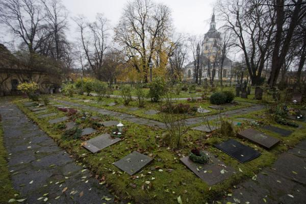 Picture of Cemetery in a corner of the small park with Katarina Kyrkan in the backgroundStockholm - Sweden